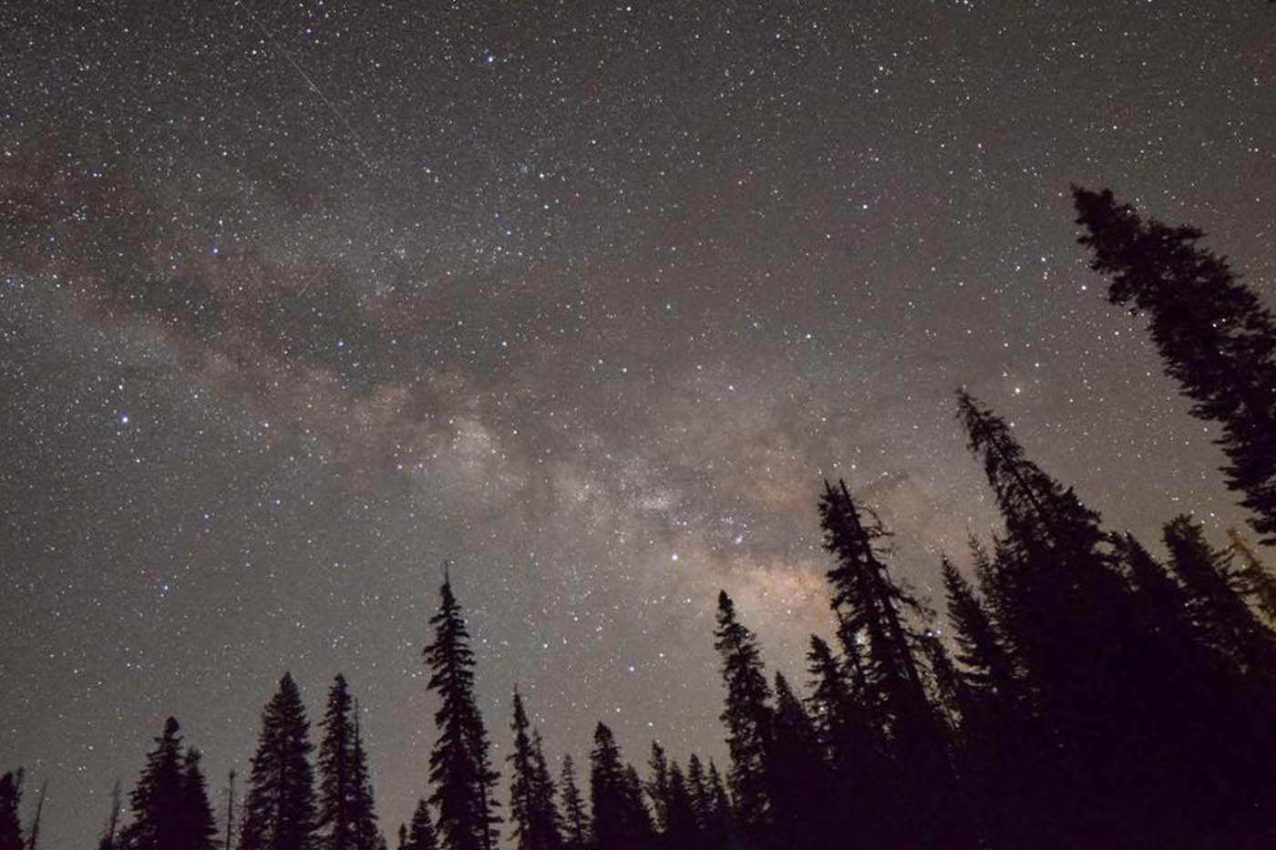 The Milky Way, as seen from Sequoia National Park