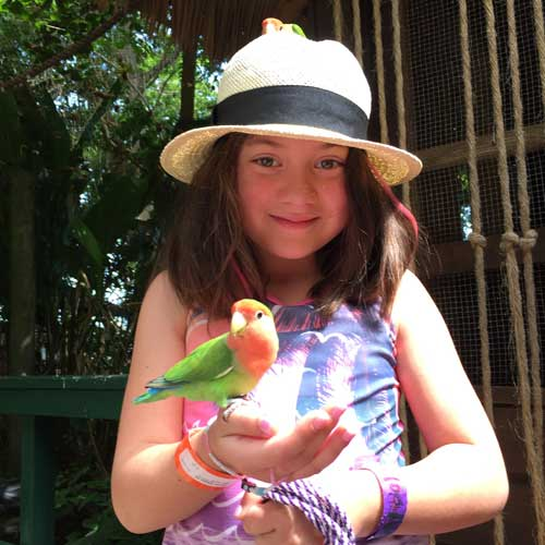 Holly makes some friends with the birds in Jamaica